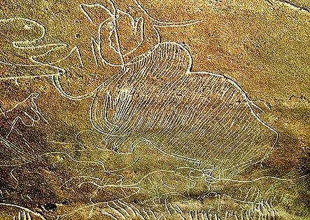 Grotte de Cussac Mammouth au flanc striŽ