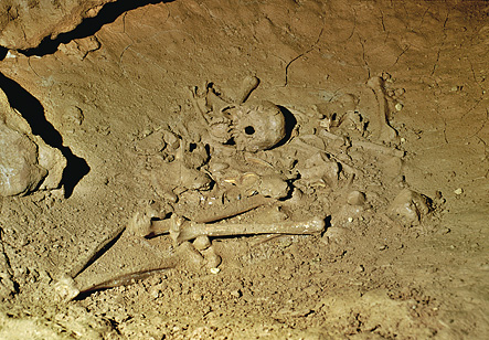 Grotte de Cussac Inhumation dans une bauge d'ours